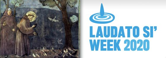 Pope Francis invites Catholics to celebrate Laudato Si' Week